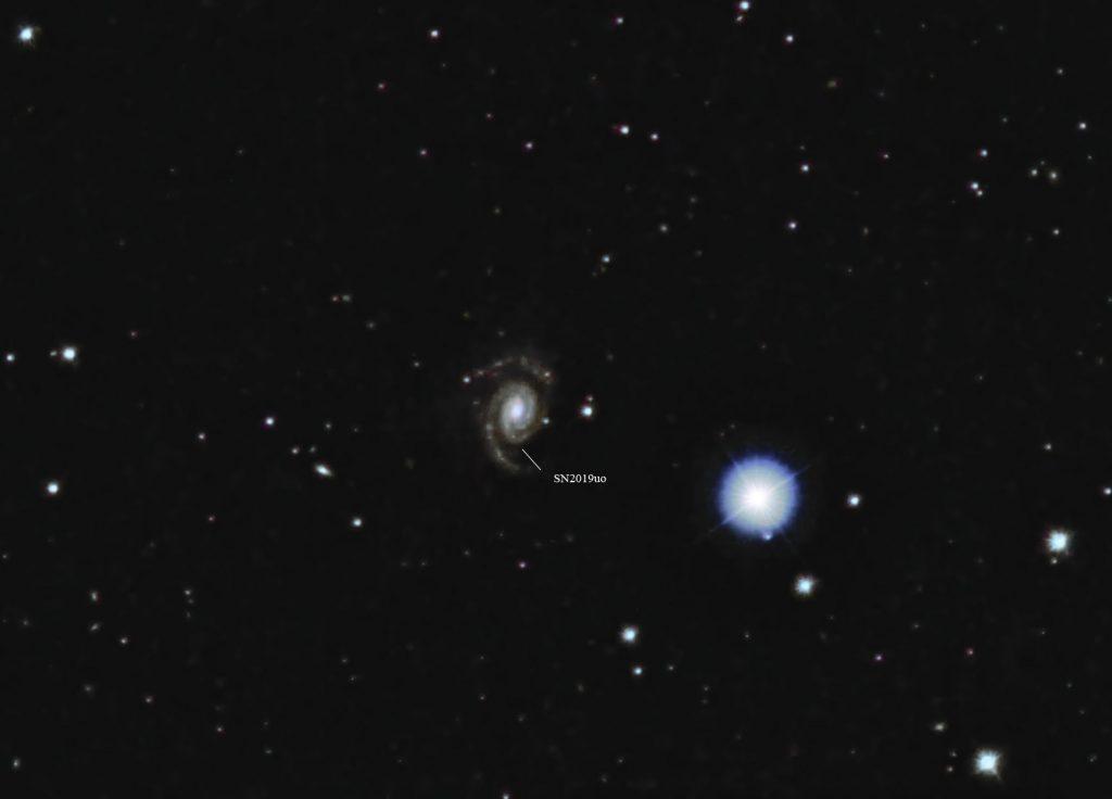SN2019uo in UGC7020. Mittlerweile ist sie deutlich schwächer als 17.4m, was als ihre Entdeckungshelligkeit angegeben wird.